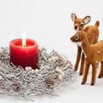 外国人から見た日本のクリスマスって?